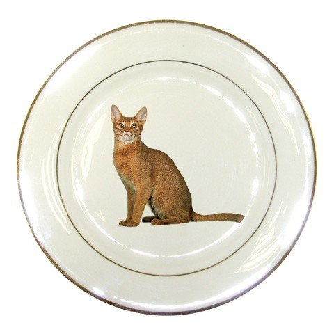 Abyssinian Cat Pet Lover  Porcelain Plate 12168424