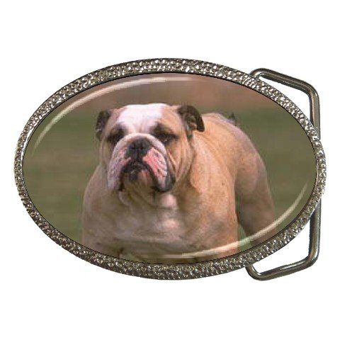 Bulldog Bull Dog Belt Buckle Pet Lover 12124825