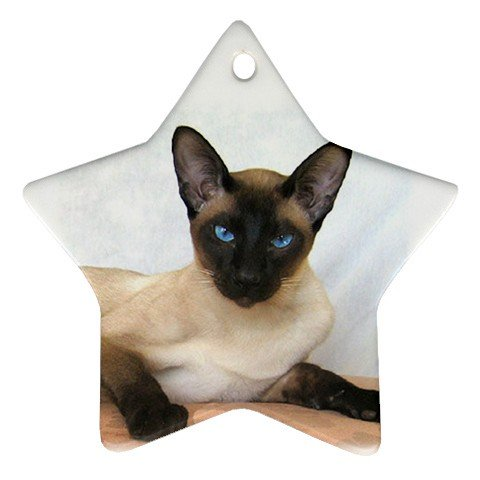 Siamese Cat Pet Lover Ornament Star  12203170