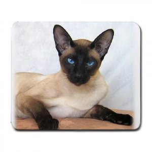 Siamese Cat Pet Lover  Large Mousepad 12203177