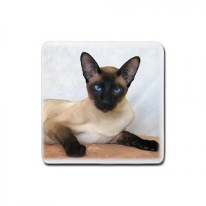 Siamese Cat Pet Lover Rubber Square Coaster 4 pack 12203178