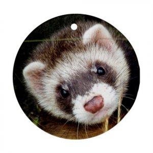 Ferret Pet Lover Ornament Round 17473594