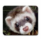 Ferret Pet Lover  Large Mousepad 17473601