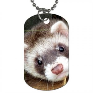 Ferret Pet Lover Dog Tag Necklace Chain 17473617
