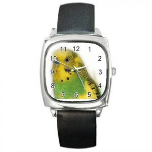 Parakeet Bird Pet Lover Square Metal Watch Unisex 16301634