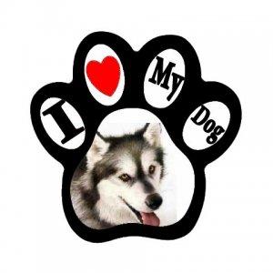 MALMUTE HUSKY Dog Pet Lover Paw Print Magnet 27018380 PAEC
