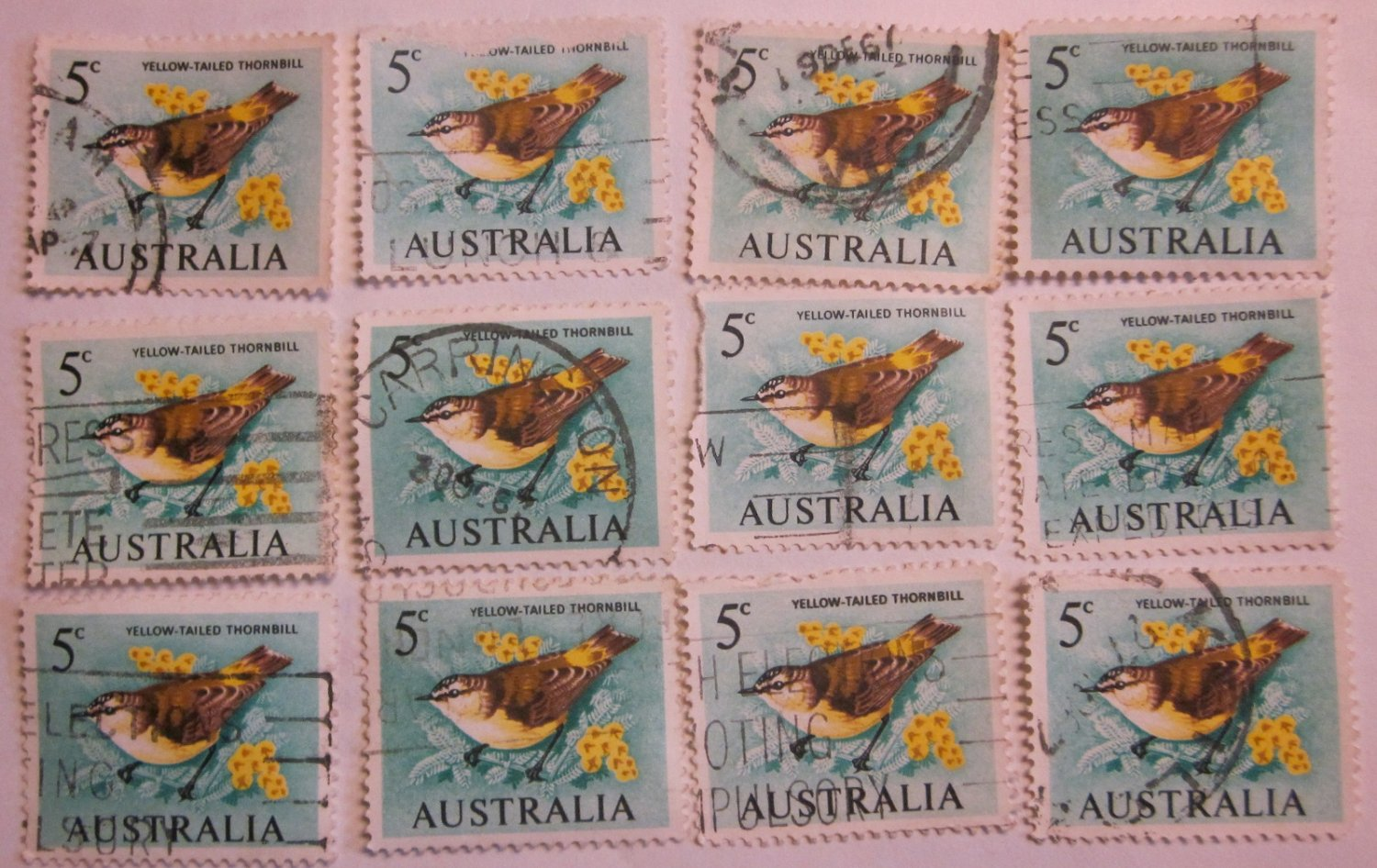 Yellow Tailed Thornbill 12 Stamps Australian  1966 5 cent Decimal