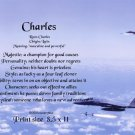 Airforce - PERSONALIZED 1 Name Meaning Print  #2