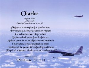 AIR FORCE #2- PERSONALIZED 1 Name Meaning Print   - no US s/h fee