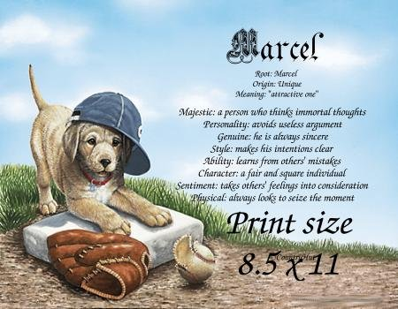 BASEBALL PUPPY  - PERSONALIZED 1 Name Meaning Print  - no US s/h fee