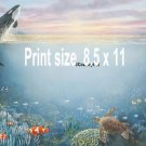 UNDER the SEA, Dophins, Sea Turtle - PERSONALIZED 1 Name Meaning Print  - no US s/h fee