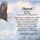 EAGLE SOARING - PERSONALIZED 1 Name Meaning Print  - no US s/h fee