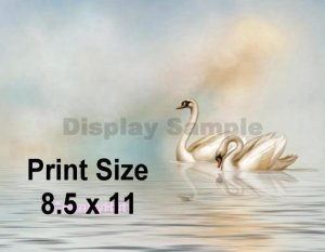 SWAN LAKE - PERSONALIZED 1  Name Meaning Print  - no US s/h fee