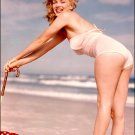 MARILYN MONROE Pinup & Hollywood Actress in Glossy Finish Photo 8x10 Nr 0992