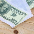 One Hundred Dollar Bill Toilet Paper Novelty Fun $100 TP Money Roll Gag Gift HC