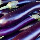 LONG PURPLE EGGPLANT SEEDS 100+ Vegetable GARDEN culinary COOKING