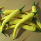 YELLOW CAYENNE HOT PEPPER SEEDS 30+ SEEDS RARE very productive NON GMO