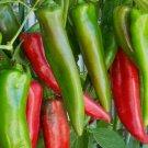 ANAHEIM CHILI PEPPER SEEDS 30+ GARDEN vegetable HOT SPICY salsa