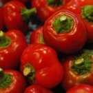 HOT CHERRY PEPPER SEEDS 30+ culinary SPICY pickling SALSA non gmo