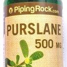 500mg Purslane 100 Capsules Portulaca Oleracea Succulent Nutrients Omega 3 Herb