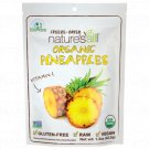 Nature's All Foods Organic Freeze Dried Pineapples 1.5 oz Pkg.