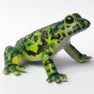 Primary Colors Amphibian Frog Picture Book - Ishikawa Frog - Yujin