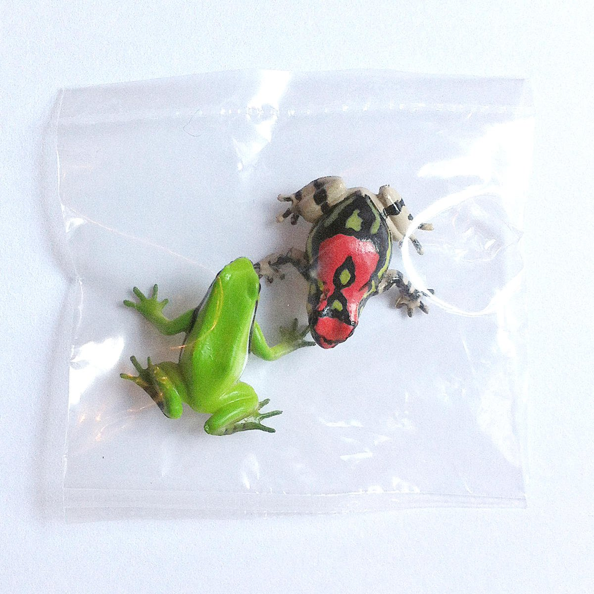 Primary Colors Amphibian Frog Picture Book - Rainbow Burrowing Frog & Japanese Tree Frog - Yujin