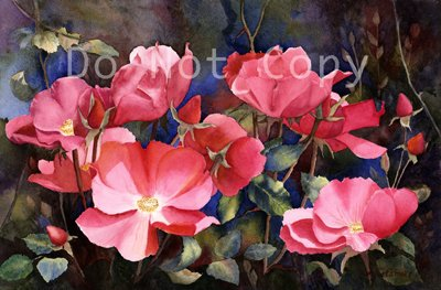 Wild Roses ***ON SALE***