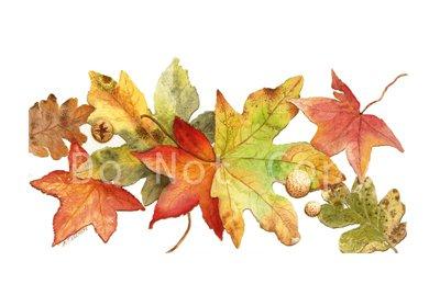 Autumn Leaves ***ON SALE***
