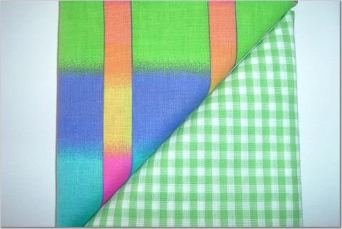 Green Gingham n Varigated Neon Print - Two FAT Quarters (2750)
