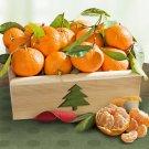 Deluxe Season's Greetings Mandarins Crate Fruits Basket