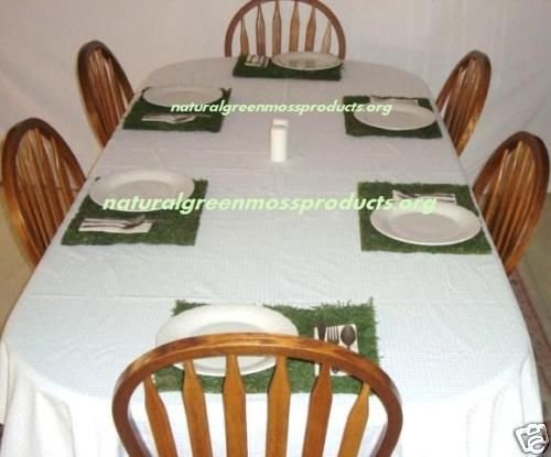 """6 Moss chargers 12""""X16"""" chargers moss covered placemats table cloth"""