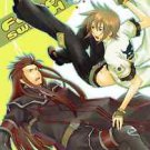 Fabre Switch | Tales of the Abyss Doujinshi | Asch x Luke Fon Fabre