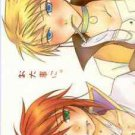 Take Care of Yourself | Tales of the Abyss Doujinshi | Guy Cecil x Luke Fabre