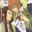 After School Game | Tales of the Abyss Doujinshi | Asch x Luke Fon Fabre