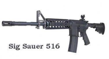 Sig Sauer 516 Carbine Convertible CO2 Airgun Rifle
