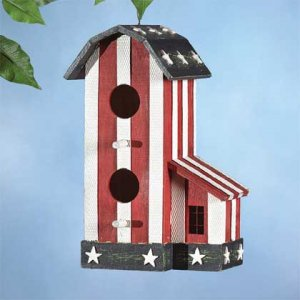 Bird in the USA