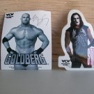 Large Wrestling Lot Vintage Decals Goldberg & Sting WCW 1998 Stickers