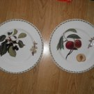 Set of 2 Royal Horticultural Society Hookers Fruit Queens China Plates Flowers