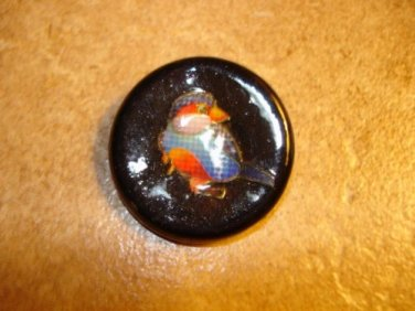 Large black plastic button with tropical bird.