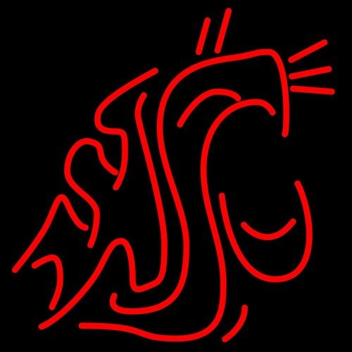 """Brand New NCAA Washington State Cougars College Beer Bar Neon Light Sign 18""""x16"""" [High Quality]"""