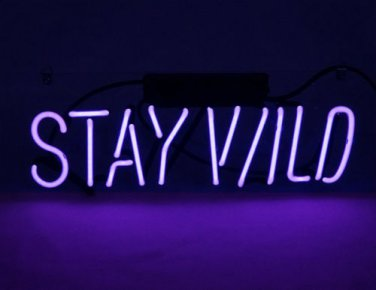 """Brand New 'Stay Wild' Wedding Real Glass Neon Light Sign 12""""x5"""" [High Quality]"""