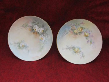 Silesia Plates Floral C D Signed 6 inch Vintage 2 plates Decorative