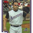 Carlos Baerga 2004 Topps #429 Arizona Diamndbacks Baseball Card