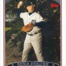 Chris Shelton 2006 Topps #161 Detroit Tigers Baseball Card