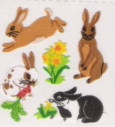 Fuzzy Rabbits