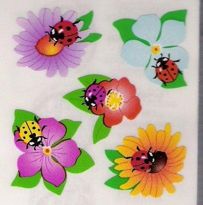Ladybugs in Flowers