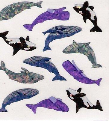 Mini Whales