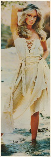 Susan Anton Dress