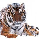 Siberian Tiger In The Snow 1999  Art Print